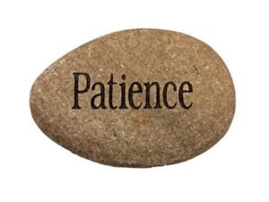 The Power of Patience in Network Marketing